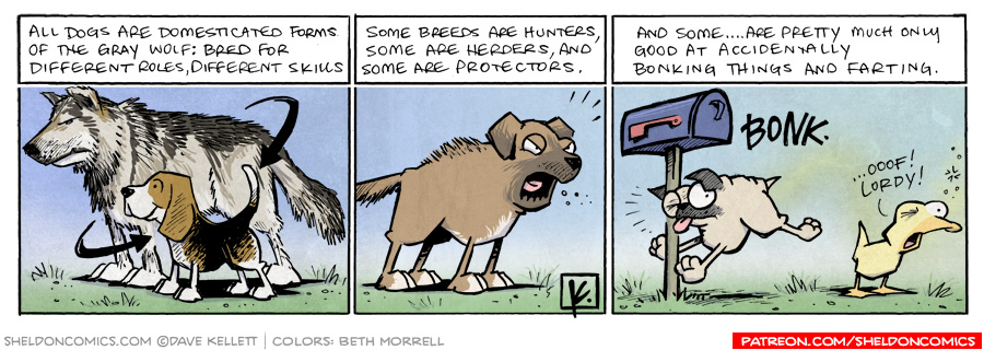 strip for March / 10 / 2011 - Some dog breeds got the skills, some breeds don't...
