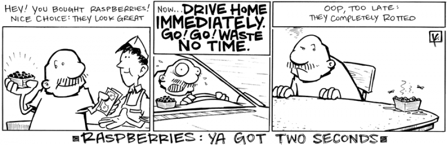 strip for May / 18 / 2011 - Gramps buys raspberries and...
