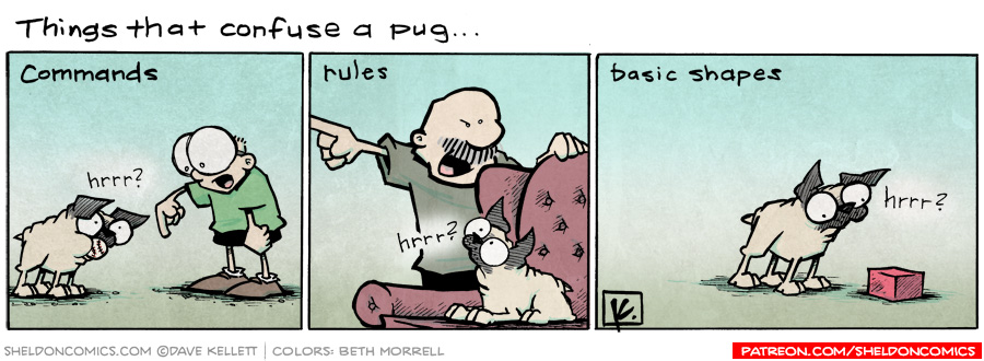 strip for July / 11 / 2011 - What are things that confuse a Pug?