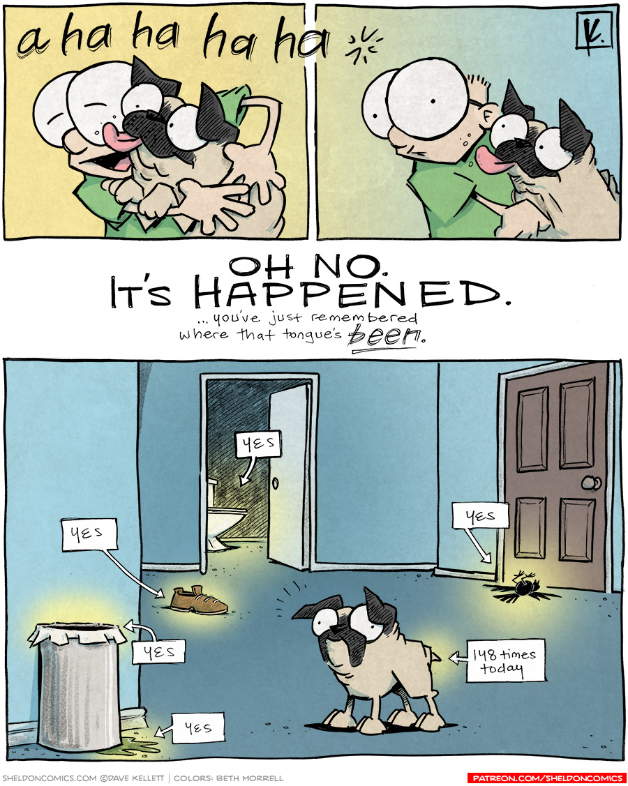 strip for May / 3 / 2012 - Oso licks Sheldon and...
