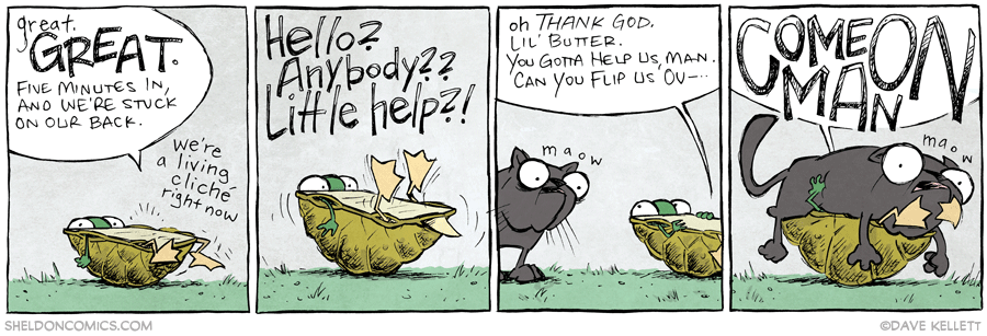 strip for October / 16 / 2013 - Turtle Power, part 3