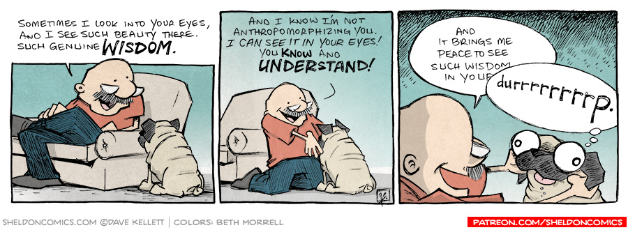 strip for February / 10 / 2014 - Can you see the wisdom in your dog's eyes?