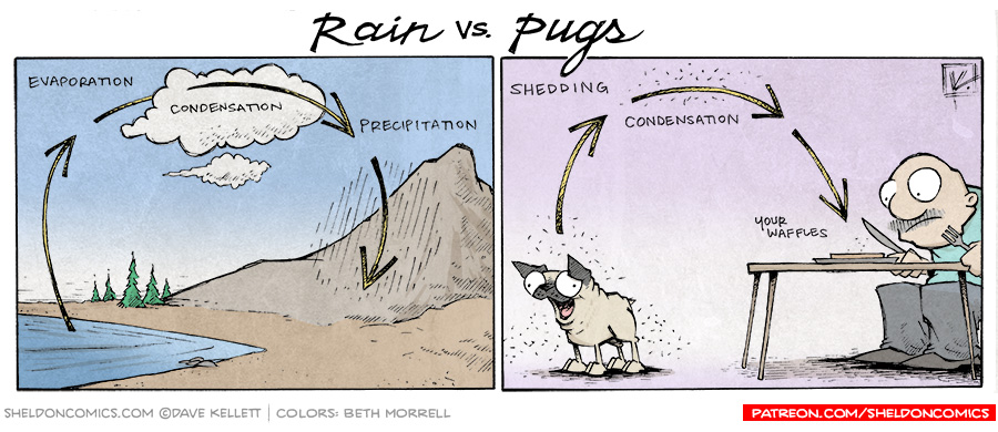 strip for December / 5 / 2014 - The Rain Cycle of Pugs