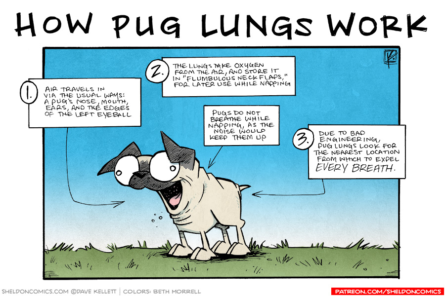 strip for April / 2 / 2015 - How Pug Lungs Work