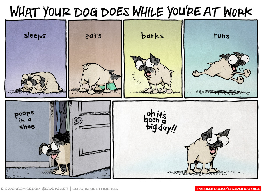 strip for February / 2 / 2016 - What Your Dog Does While You're At Work
