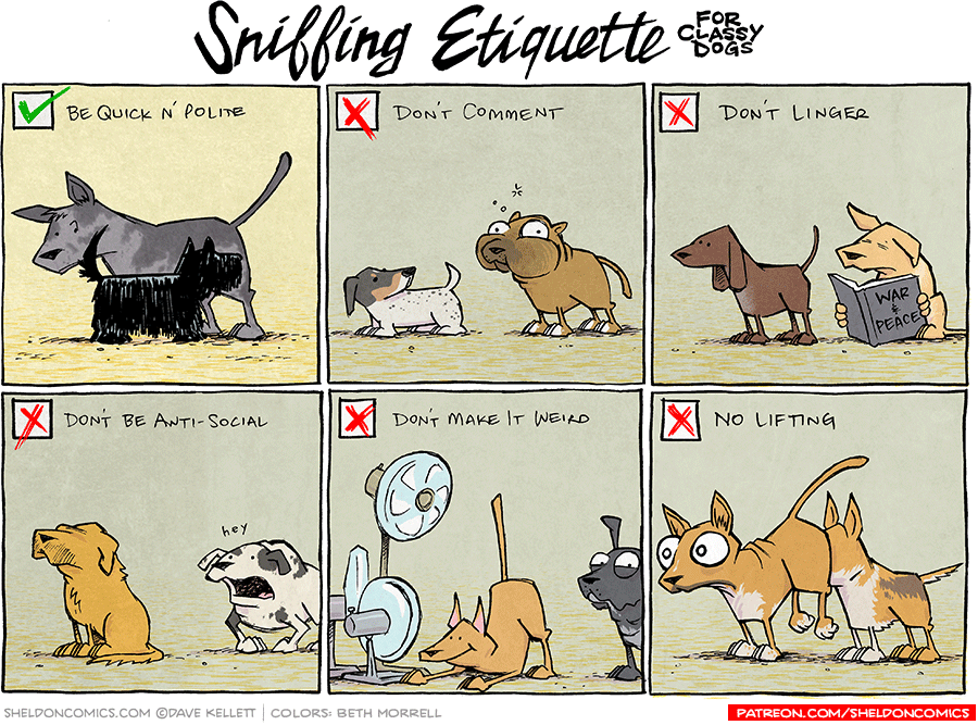 strip for February / 24 / 2017 - Sniffing Etiquette