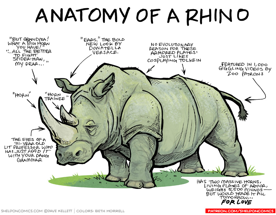 strip for April / 24 / 2017 - Anatomy of a Rhino