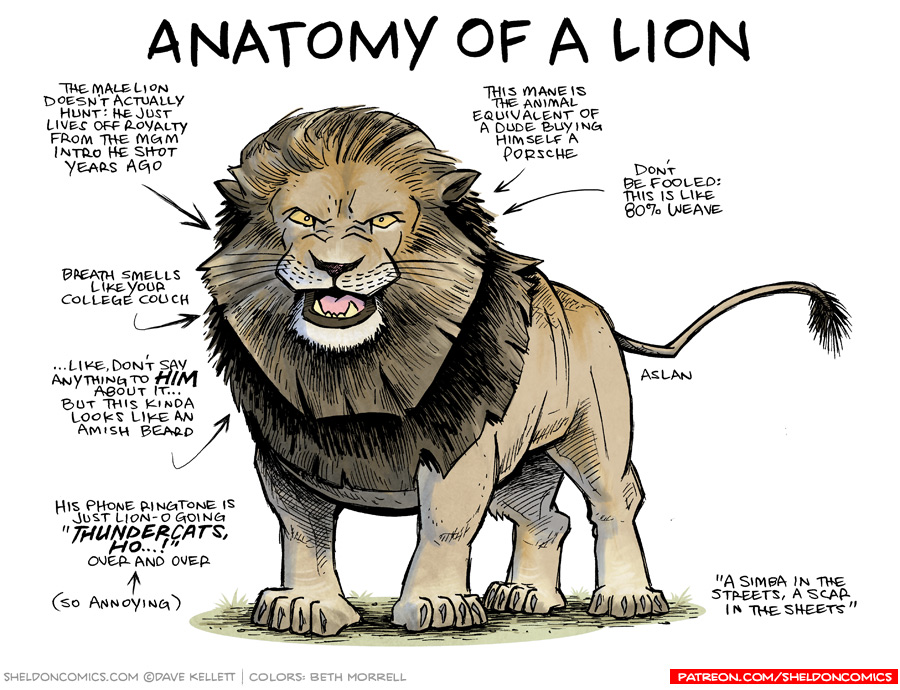 strip for April / 28 / 2017 - Anatomy of a Lion