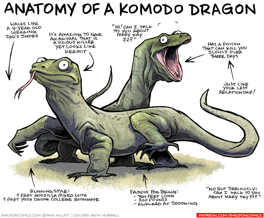 strip for May / 3 / 2017 - Anatomy of a Komodo Dragon