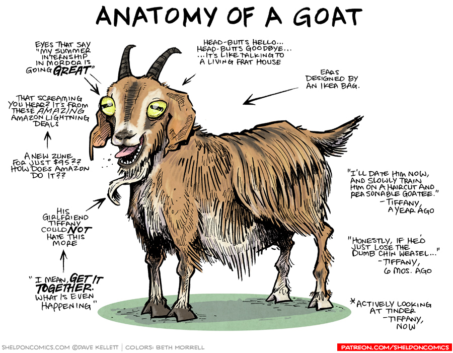 strip for July / 14 / 2017 - Anatomy of a Goat