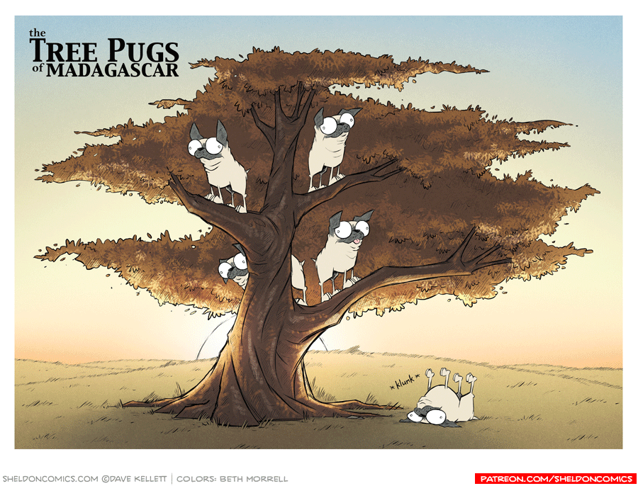 strip for November / 22 / 2017 - The Tree Pugs of Madagascar