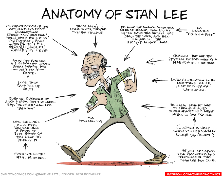 strip for May / 13 / 2019 - Anatomy of Stan Lee