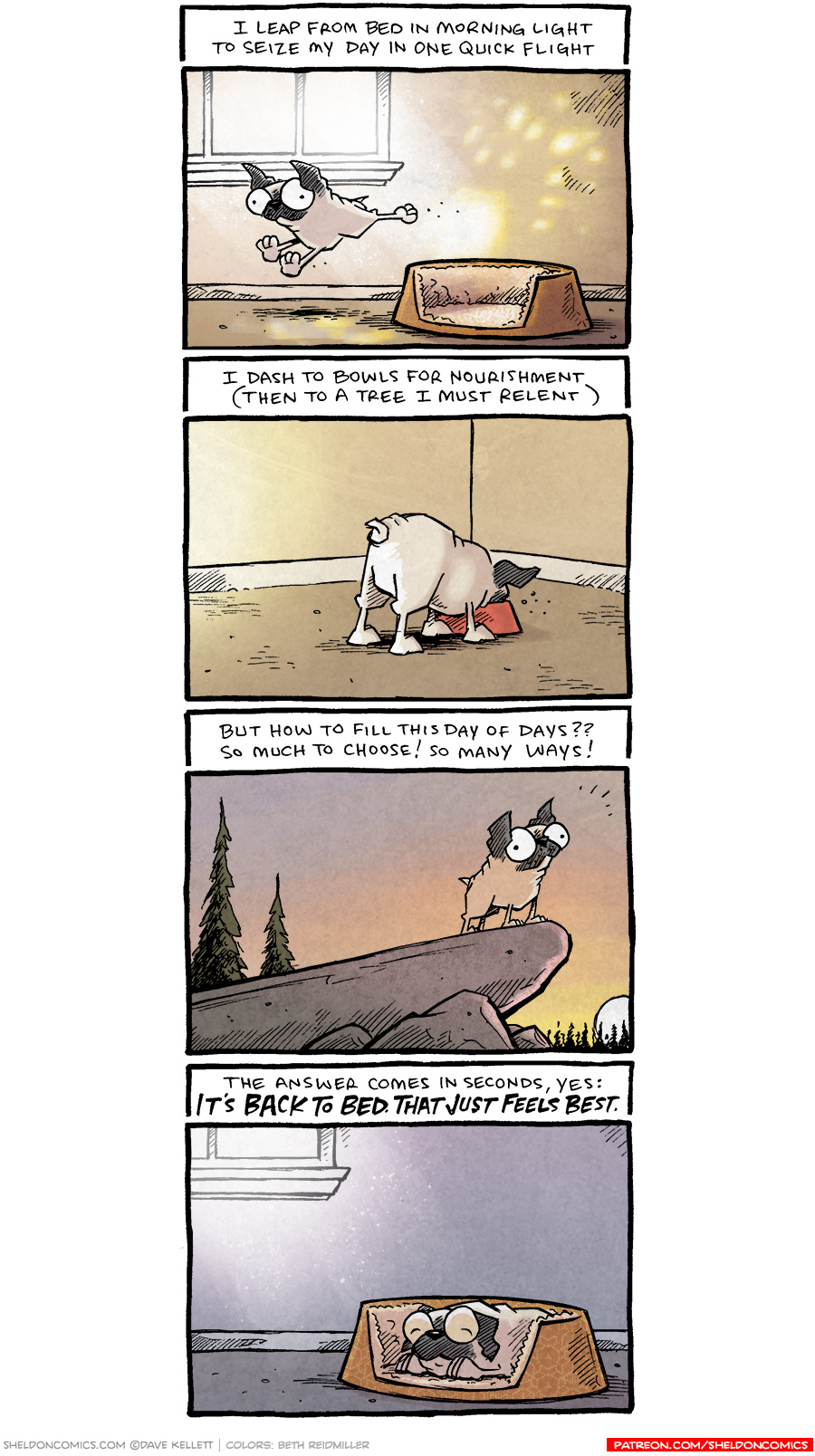 strip for August / 30 / 2021 - Morning Routine